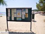 Het mooie strand van Koukounaries - Skiathos - foto 6