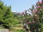 Skiathos Palace gezien vanaf Koukounaries - Skiathos
