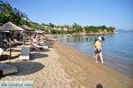 Achladies | Skiathos Sporaden | De Griekse Gids foto 4 - Foto van De Griekse Gids