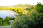 Koukounaries | Skiathos Sporaden | De Griekse Gids foto 2