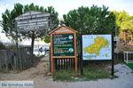 Koukounaries | Skiathos Sporaden | De Griekse Gids foto 5 - Foto van De Griekse Gids