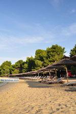Koukounaries | Skiathos Sporaden | De Griekse Gids foto 11