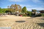 Troulos beach | Skiathos Sporaden | De Griekse Gids foto 8
