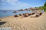 Troulos beach | Skiathos Sporaden | De Griekse Gids foto 14