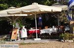 Troulos beach | Skiathos Sporaden | De Griekse Gids foto 15