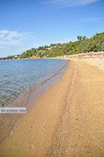 Aghia Paraskevi (Platanias beach) | Skiathos Sporaden | De Griekse Gids foto 14