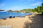 Aghia Paraskevi (Platanias beach) | Skiathos Sporaden | De Griekse Gids foto 22