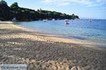Aghia Paraskevi (Platanias beach) | Skiathos Sporaden | De Griekse Gids foto 26