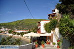 Megali Ammos (Ftelia) | Skiathos Sporaden | De Griekse Gids foto 6