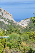 Nikotsara strand   Skiathos Sporaden   De Griekse Gids foto 1