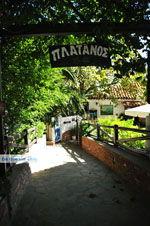 Restaurant Platanos bij Profitis Ilias | Skiathos Sporaden | De Griekse Gids foto 2