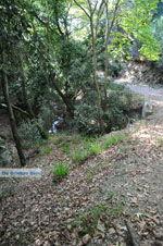 Wandelpaden bij Klooster Kechria | Skiathos Sporaden | De Griekse Gids foto 2