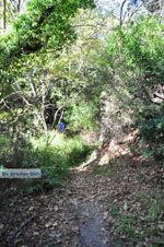 Wandelpaden bij Klooster Kechria   Skiathos Sporaden   De Griekse Gids foto 5