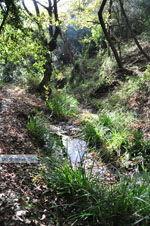 Wandelpaden bij Klooster Kechria | Skiathos Sporaden | De Griekse Gids foto 18