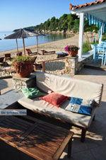 Maniatis Garden Achladies | Skiathos Sporaden | De Griekse Gids foto 3