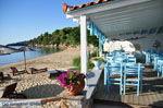 Maniatis Garden Achladies | Skiathos Sporaden | De Griekse Gids foto 4 - Foto van De Griekse Gids