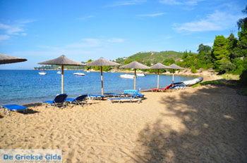 Aghia Paraskevi (Platanias beach) | Skiathos Sporaden | De Griekse Gids foto 22 - Foto van De Griekse Gids