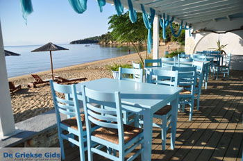 Achladies | Skiathos Sporaden | De Griekse Gids foto 15 - Foto van De Griekse Gids